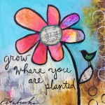 Donna Estabrooks - grow where you are planted